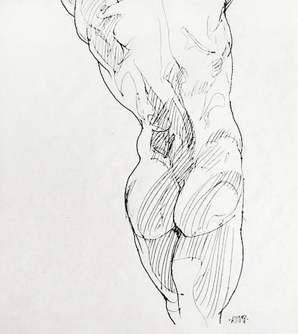 (CreativeWork) Gluteus Maximus by Roz McQuillan. drawing. Shop online at Bluethumb.