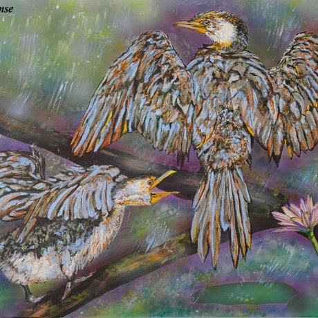 (CreativeWork) Cormorants: Dancing in the rain by Susan Willemse. Acrylic Paint. Shop online at Bluethumb.