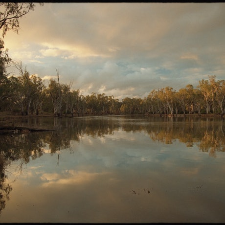 (CreativeWork) Murray River, Torrumbarry 1 Ed. 1 of 9 by Damian Seagar. Photograph. Shop online at Bluethumb.