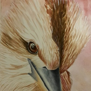 (CreativeWork) Iconic kookaburra by Svetlana Cook. watercolour. Shop online at Bluethumb.