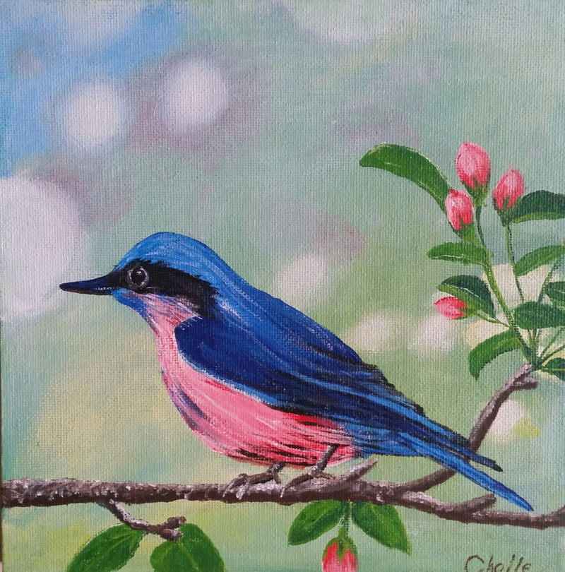 (CreativeWork) Spring Bird by Michelle Payne. arcylic-painting. Shop online at Bluethumb.