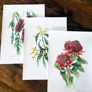 (CreativeWork) Australian Native Flowers (Set of 3) - Limited edition prints  Ed. 52 of 100 by Darlene Lavett. print. Shop online at Bluethumb.