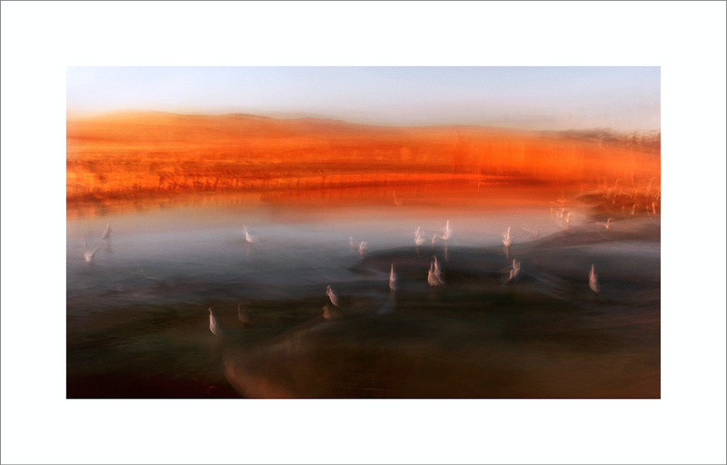 (CreativeWork) WADE IN THE TANGERINE LIGHT by Karen Visser. photograph. Shop online at Bluethumb.