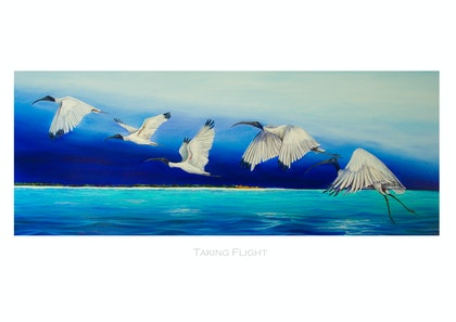 (CreativeWork) Taking flight - LE Print Ed. 7 of 150 by Suzy French. print. Shop online at Bluethumb.