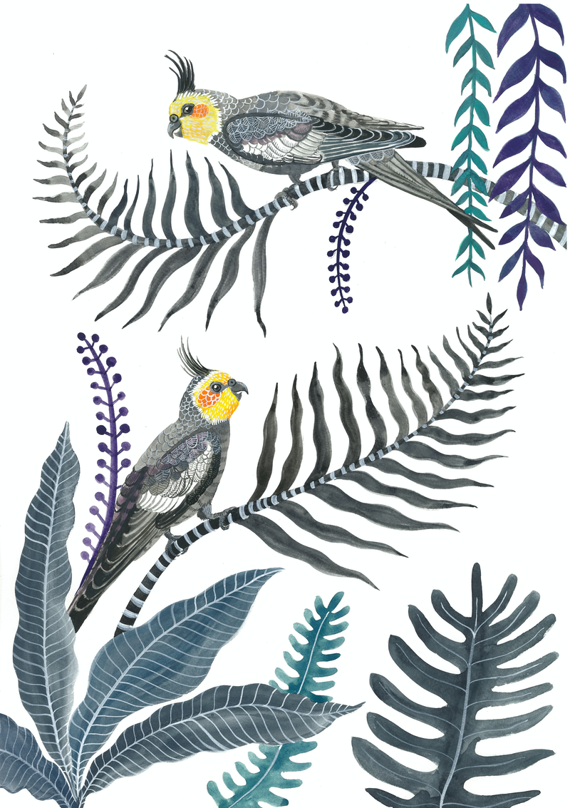 (CreativeWork) Cockatiel Forest by Sally Browne. #<Filter:0x0000564ca68f0ba8>. Shop online at Bluethumb.