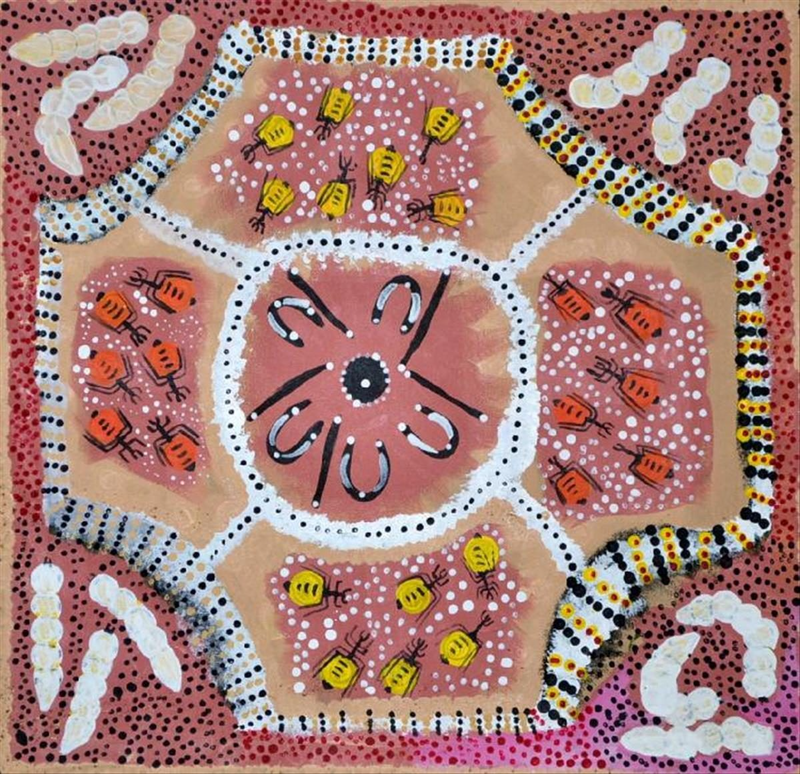 (CreativeWork) Bush Tucker Catalog no. 486-12 by Joanne Wheeler. Acrylic Paint. Shop online at Bluethumb.