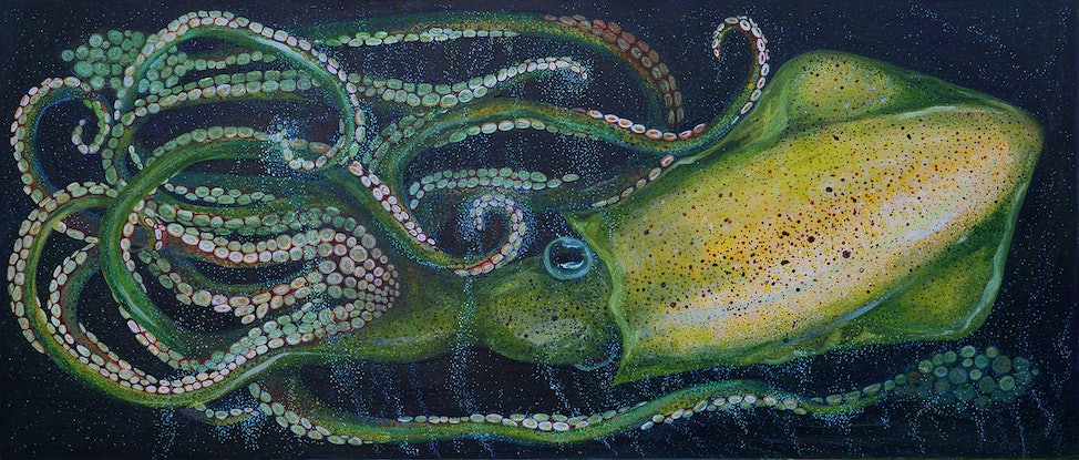 (CreativeWork) Pocket Kraken by Michelle Sanger. Other Media. Shop online at Bluethumb.