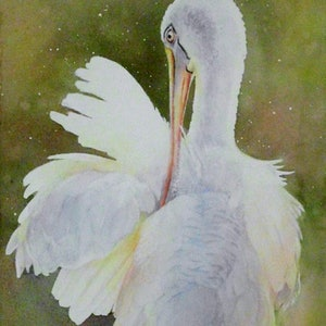 (CreativeWork) Feathers Aglow by Jenny Hartley. watercolour. Shop online at Bluethumb.