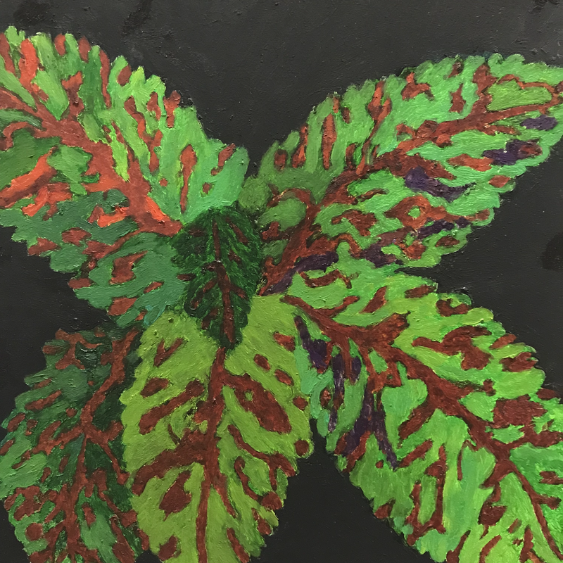 (CreativeWork) Croton by Mary-Anne Stuart. oil-painting. Shop online at Bluethumb.