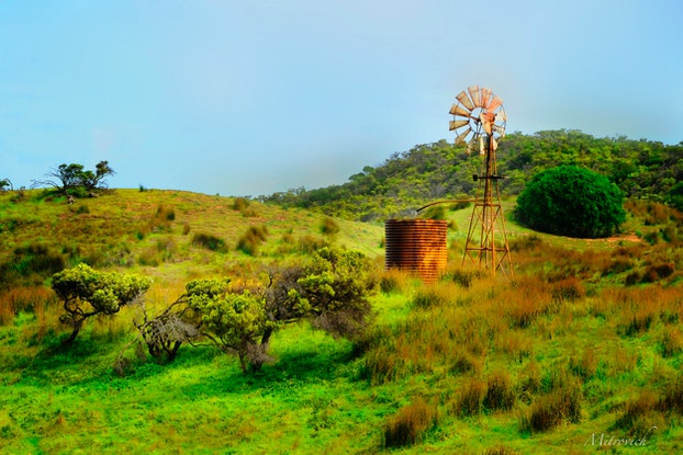 (CreativeWork) Outback Study#219 by Simon Mitrovich. Photograph. Shop online at Bluethumb.