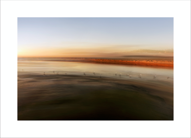 (CreativeWork) LIGHTNESS OF RISE  by Karen Visser. photograph. Shop online at Bluethumb.