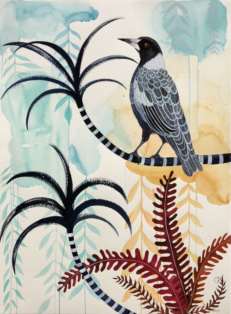 (CreativeWork) Alice Street Magpie by Sally Browne. other-media. Shop online at Bluethumb.