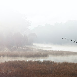(CreativeWork) Mist over  Lake  Catani Ed. 20 of 20 by Robert Armitage. photograph. Shop online at Bluethumb.