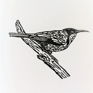 (CreativeWork) Eastern Spinebill - Lino Print Ed. 12 of 50 by Craig Williams. print. Shop online at Bluethumb.