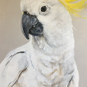(CreativeWork) Cocky by Emma Ward. arcylic-painting. Shop online at Bluethumb.