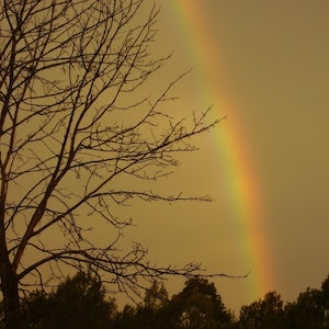"""(CreativeWork) """"Somewhere Over The Rainbow... """" Ed. 1 of 20 by Becky Jo Hull. print. Shop online at Bluethumb."""