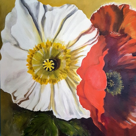 (CreativeWork) SILKY POPPY PETALS by MERON SOMERS. Acrylic Paint. Shop online at Bluethumb.