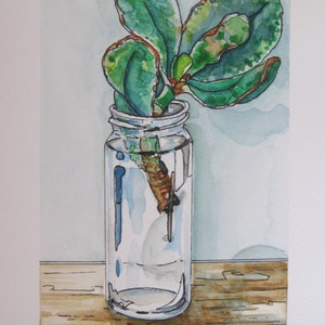(CreativeWork) Succulent still life #1 by Michelle Pujol. watercolour. Shop online at Bluethumb.