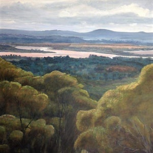 (CreativeWork) Vast - Fraser Range and The Great Western Woodlands by Leanne Jamieson. arcylic-painting. Shop online at Bluethumb.