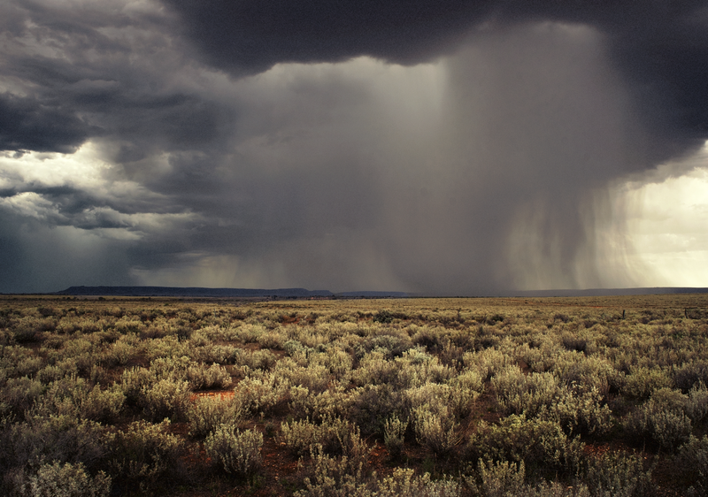 (CreativeWork) Heavy Weather by Alex Frayne. photograph. Shop online at Bluethumb.