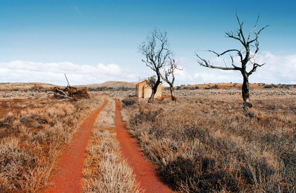 (CreativeWork) Red Road by Alex Frayne. photograph. Shop online at Bluethumb.
