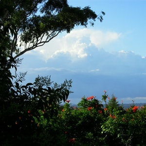 (CreativeWork) Excellent View From Our Backyard Ed. 1 of 20 by Becky Jo Hull. print. Shop online at Bluethumb.