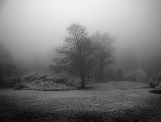 (CreativeWork) Solstice Ed. 1 of 1 by Alex Frayne. Photograph. Shop online at Bluethumb.