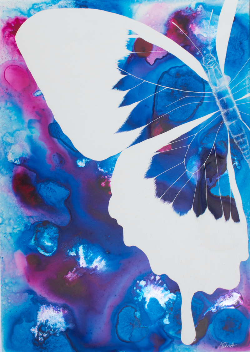 (CreativeWork) Papilio Rising by Samantha Blanks. other-media. Shop online at Bluethumb.