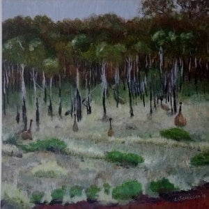 (CreativeWork) Hidden Emus - Dundas by Leanne Jamieson. arcylic-painting. Shop online at Bluethumb.