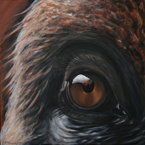 (CreativeWork) Inaction - Orangutan 2 by Emily Monnington. arcylic-painting. Shop online at Bluethumb.