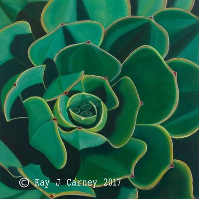 (CreativeWork) Echeveria by Kay Carney. Acrylic Paint. Shop online at Bluethumb.