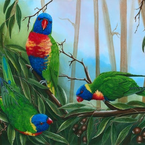 (CreativeWork) LORIKEETS TRIO by Debra Dickson. arcylic-painting. Shop online at Bluethumb.