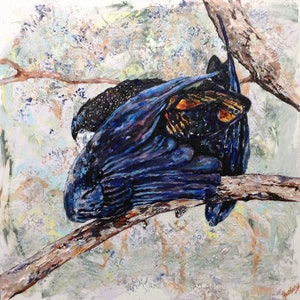 (CreativeWork) Elusive Black Cockatoo by Lurlene Murray. arcylic-painting. Shop online at Bluethumb.