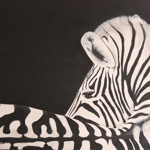 (CreativeWork) The Zebra  by Dennis Heape. arcylic-painting. Shop online at Bluethumb.
