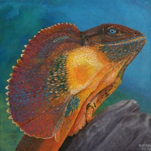 (CreativeWork) Frill Necked Lizard. by Dennis Heape. arcylic-painting. Shop online at Bluethumb.