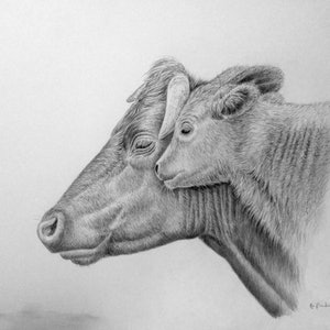 (CreativeWork) A Mother's Love  by Jo Frederiks. drawing. Shop online at Bluethumb.