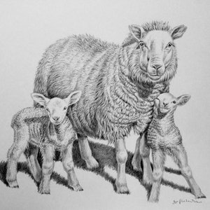 (CreativeWork) A Mothers Love by Jo Frederiks. drawing. Shop online at Bluethumb.
