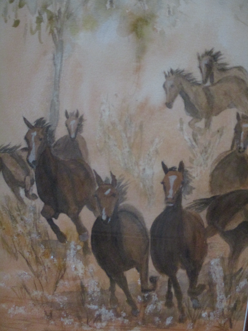 (CreativeWork) Brumbies by Claudia Stern. watercolour. Shop online at Bluethumb.