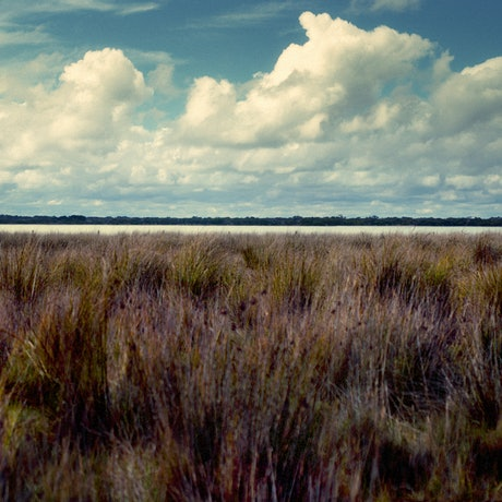 (CreativeWork) Coorong Linear Ed. 1 of 1 by Alex Frayne. Photograph. Shop online at Bluethumb.