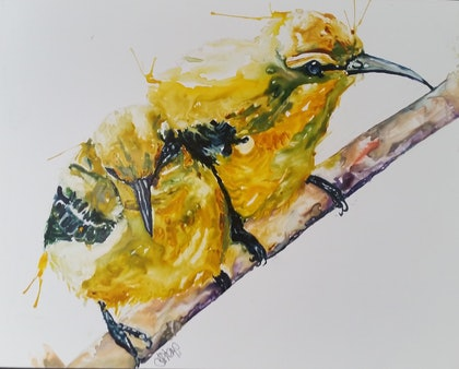 (CreativeWork) Baby Sunbirds by Leanne Kremp. watercolour. Shop online at Bluethumb.