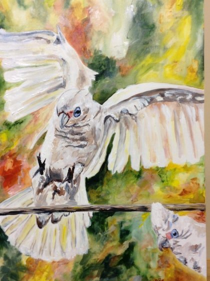 (CreativeWork) Little Corella's by Lurlene Murray. arcylic-painting. Shop online at Bluethumb.