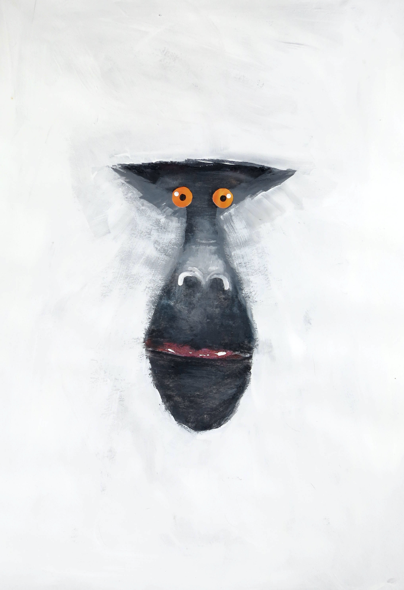 (CreativeWork) Mandrill - Monkey Series  by John Graham. mixed-media. Shop online at Bluethumb.