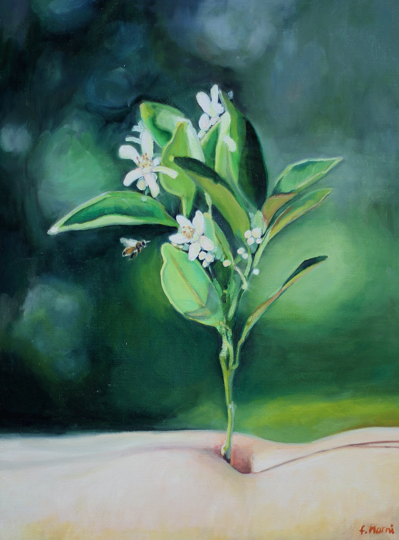(CreativeWork) orange blossom by Francesca Narni. oil-painting. Shop online at Bluethumb.