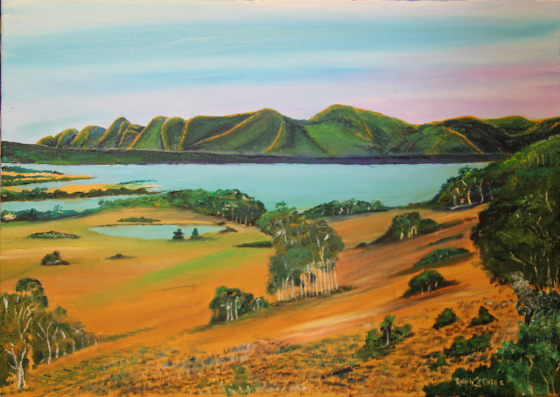 (CreativeWork) THE LAKE by Ralph Coles. oil-painting. Shop online at Bluethumb.