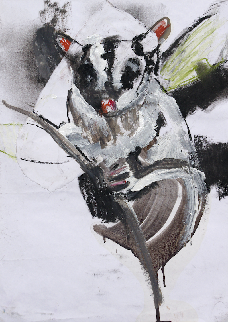 (CreativeWork) Sugar Glider II by Roland Weight. mixed-media. Shop online at Bluethumb.