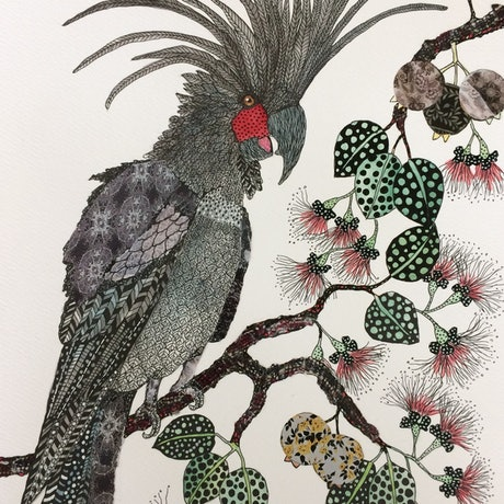 (CreativeWork) I've got million dollar charm: Palm Cockatoo by Jude Willis. Watercolour Paint. Shop online at Bluethumb.