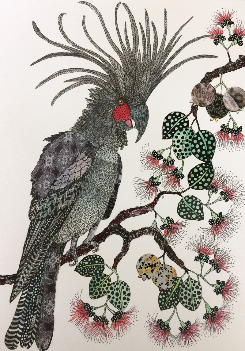 (CreativeWork) I've got million dollar charm: Palm Cockatoo by Jude Willis. watercolour. Shop online at Bluethumb.