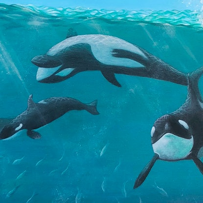 (CreativeWork) Orcas Feeding Playground by Andrea Marriette. Acrylic Paint. Shop online at Bluethumb.