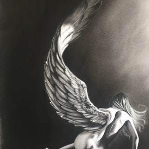 (CreativeWork) Fallen Angel by Megan Pears. drawing. Shop online at Bluethumb.