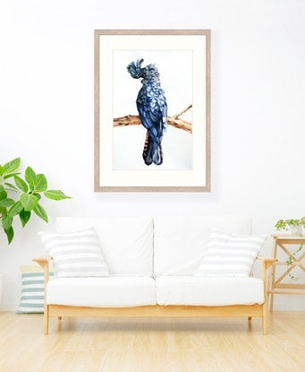(CreativeWork) RED TAILED BLACK COCKATOO by Chrysovalantou Mavroudis. #<Filter:0x00007f6e58d7dc28>. Shop online at Bluethumb.